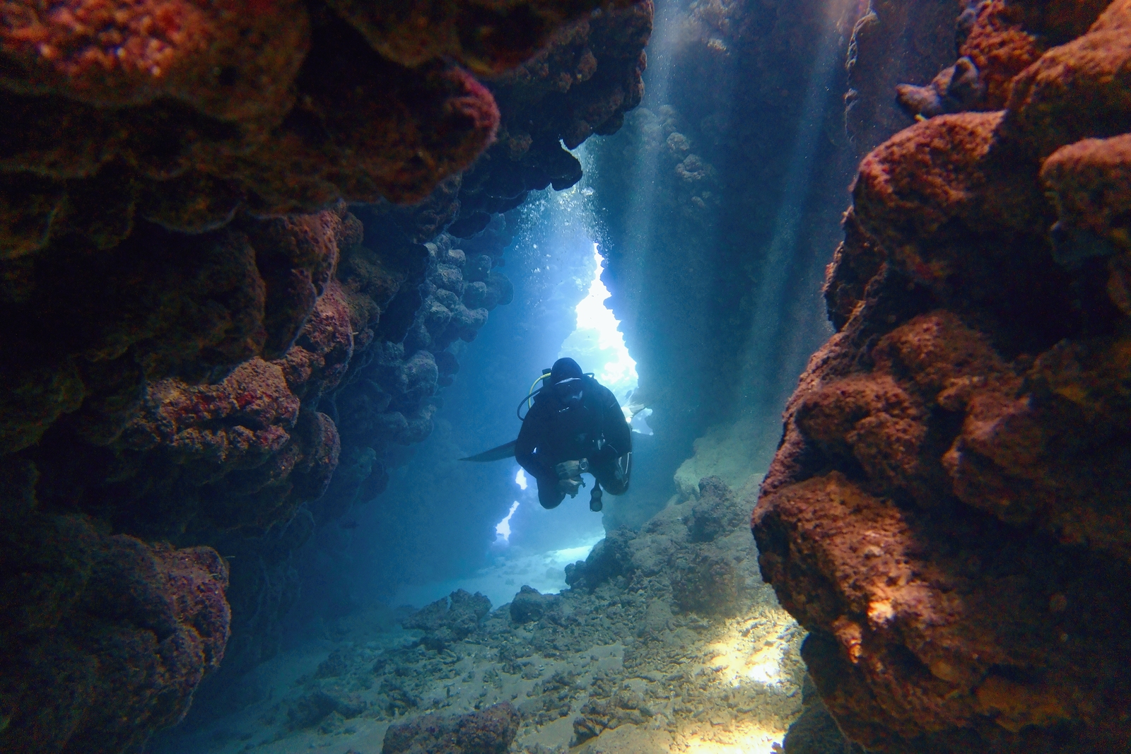 Summer's coming.. have you thought about cave diving?